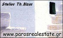 PAROS REAL ESTATE IN  PARIKIA